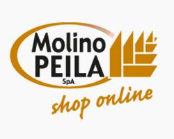 Molino Peila - Formazione finanziata Torino Poliedra