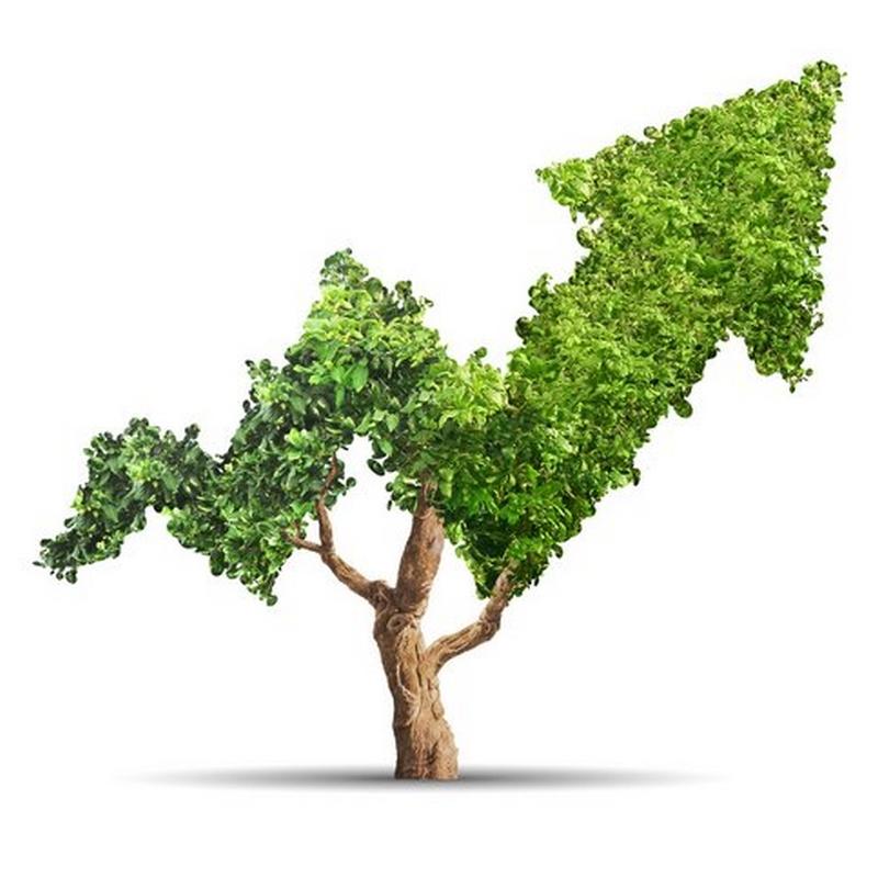 SUSTAINABILITY & GREEN ECONOMY - formazione aziendale - Poliedra spa