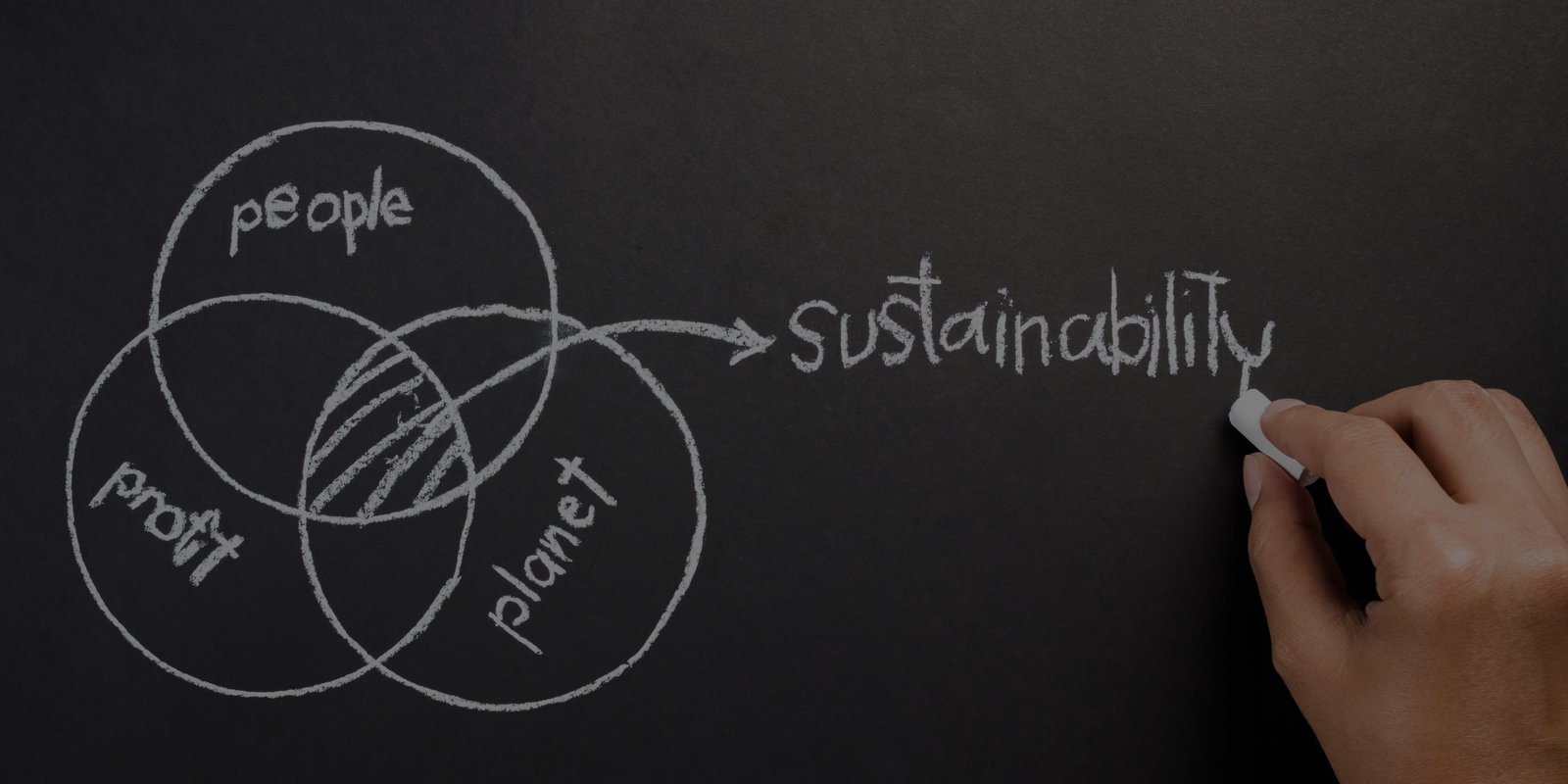 SUSTAINABILITY & GREEN ECONOMY - formazione aziendale - Torino - Poliedra spa
