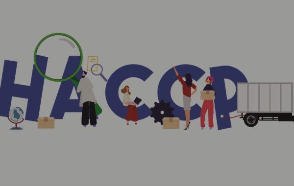 Corso e-learning di igiene degli alimenti ed haccp-base - Torino - Poliedra Spa